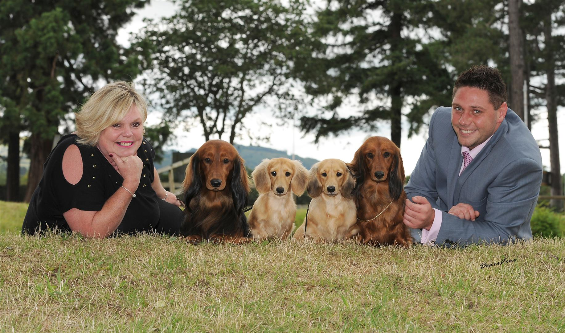 Zarcrest – UK Top Dachshund Hobby Breeders & Show Kennel. - photo#18